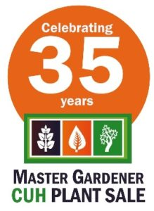 35th Anniversary of KCMG CUH Plant Sale