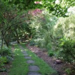 Soos Creek Garden Path D. Twitty
