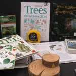 Trees Teaching Kit contents