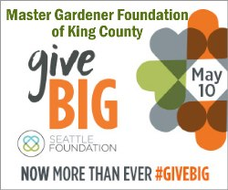 GiveBIG to the MG Foundation