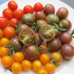 Tomatoes—Photo credit: MG Gia Parsons