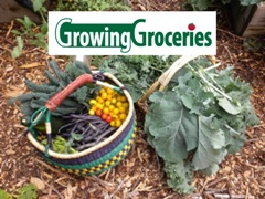 Growing Groceries - Market Basket of Veggies